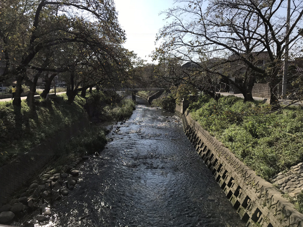 五条川.jpg